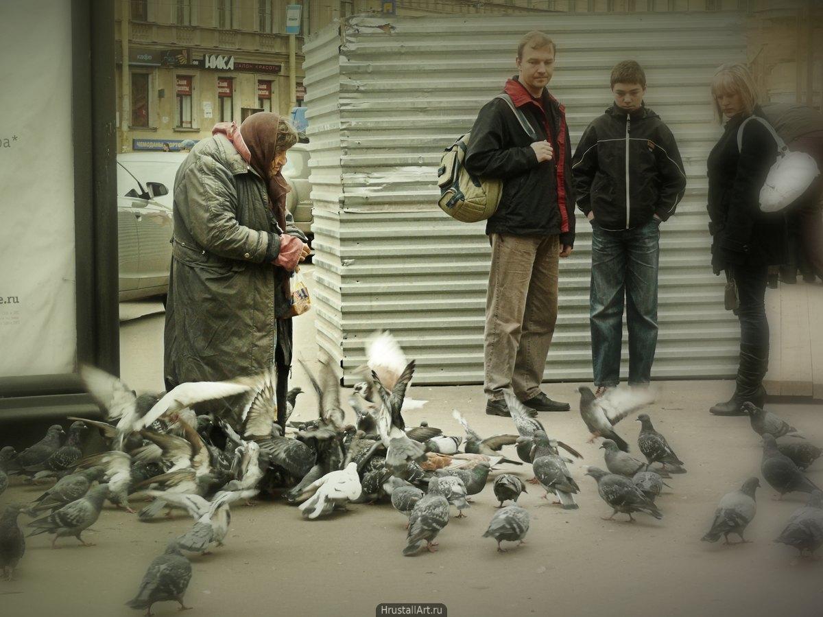 Яга и голуби