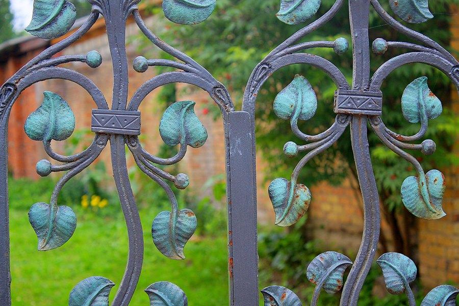 Кованная ограда, листья и ягоды.