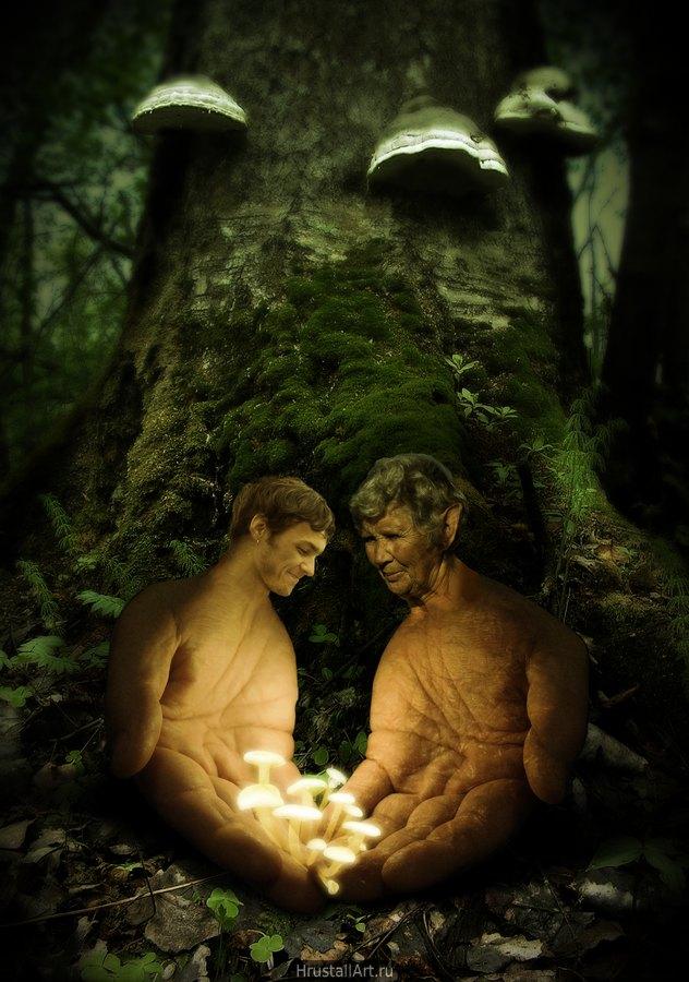 У корней дерева две сюрреалистические фигуры, старая и молодая, Старая передаёт молодой несколько светящихся в сумраке грибов.
