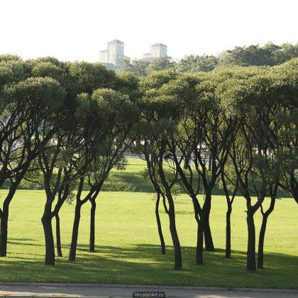 Пейзаж с башнями