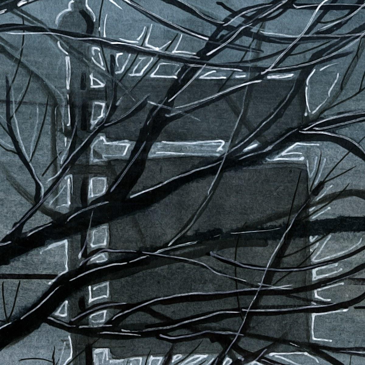 Тополь, фонарь, дорога, зима