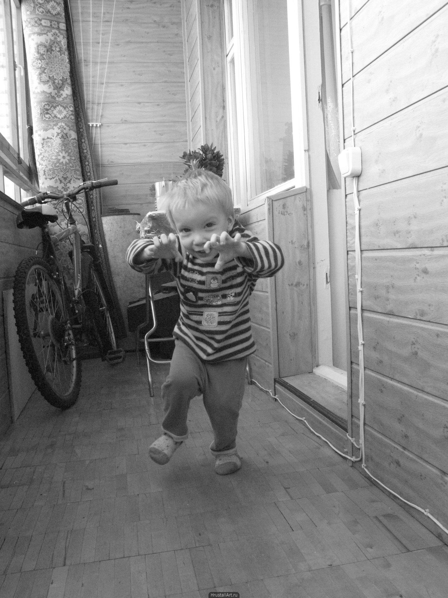 Лев нападает на фотографа